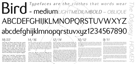 Bird Font - Light, Medium and Bold / Roman and Oblique